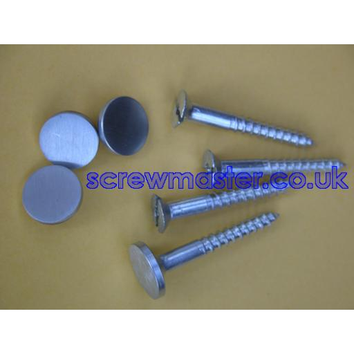 set of 4 Mirror Screws with Satin Chrome Disc screw in Cap 10mm diameter brushed stainless effect