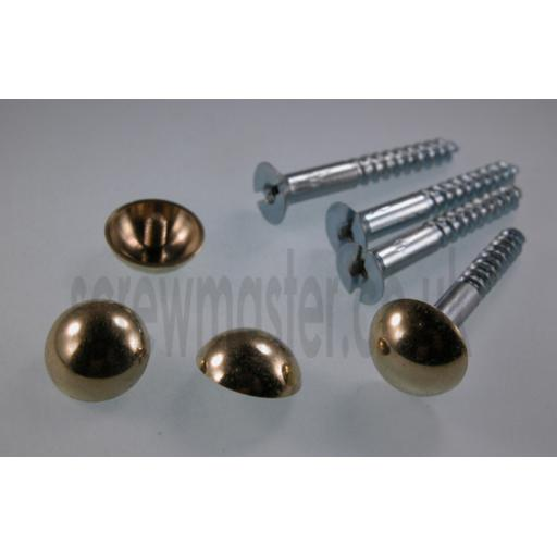 set of 4 Mirror Screws with polished Brass Dome screw in Cap 12mm diameter