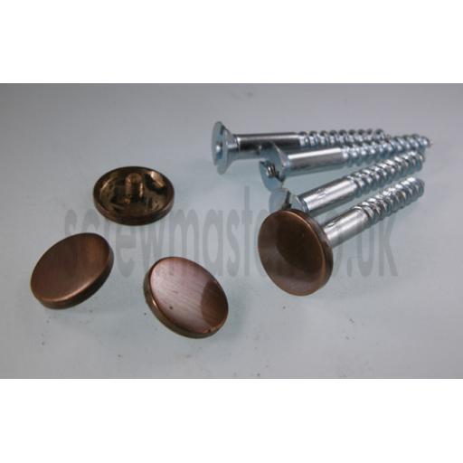 Pack of 4 Mirror Screws with Bronze Disc screw in Cap 20mm diameter flat Cover Head