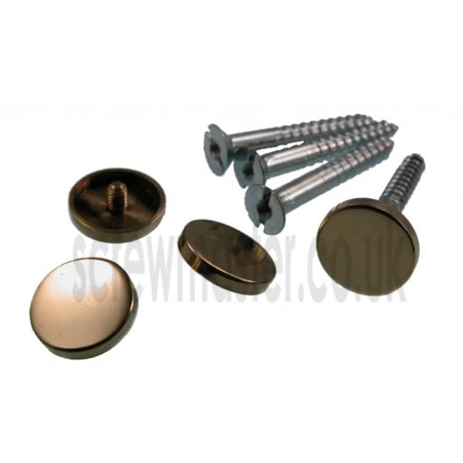 Pack of 4 Mirror Screws with polished Brass Disc screw in Cap 15mm diameter