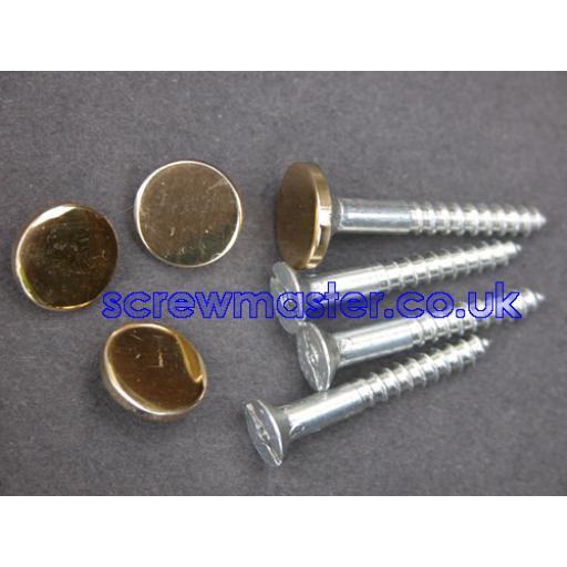 set of 4 Mirror Screws with polished Brass Disc screw in Cap 10mm diameter