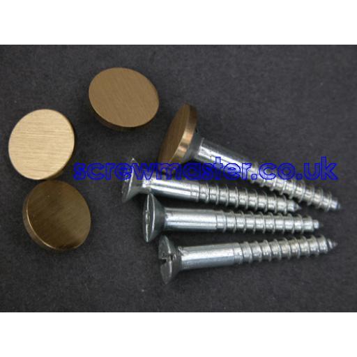 set of 4 Mirror Screws with Satin Brass Disc screw in Cap 10mm diameter brushed finish