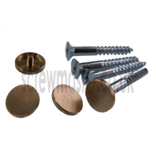 Pack of 4 Mirror Screws with Satin Brass Disc screw in Cap 15mm diameter brushed finish