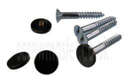 set-of-4-mirror-screws-with-black-powder-coated-disc-screw-in-cap-12mm-diameter-334-p.jpg