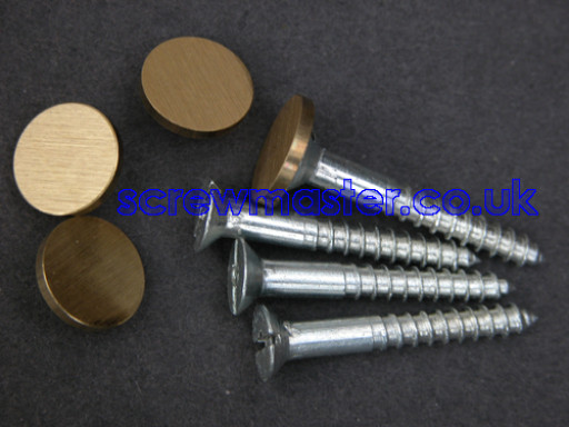 set-of-4-mirror-screws-with-satin-brass-disc-screw-in-cap-12mm-diameter-brushed-finish-418-p.jpg